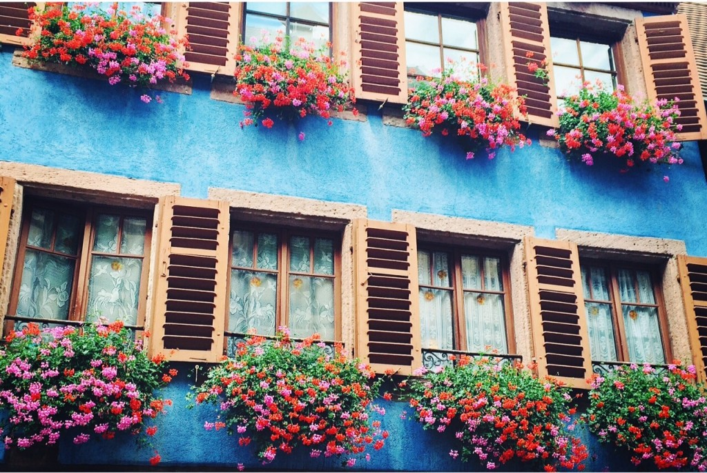 Juste à côté de Riquewihr, Ribeauvillé est un joli village fleuri et coloré, une belle étape sur la route des Vins d'Alsace