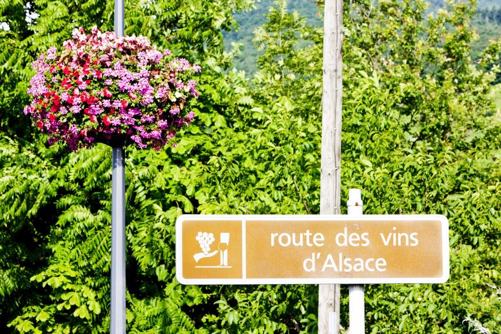 La Route des Vins d'Alsace s'étend sur 170km entre Strasbourg et Mulhouse